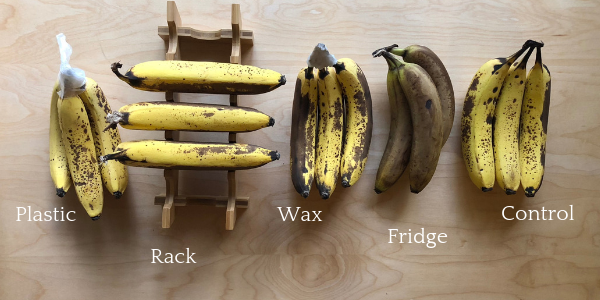 4 Ways to store bananas results.png