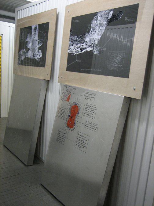 Aggression Mapping (installation), 2004-5