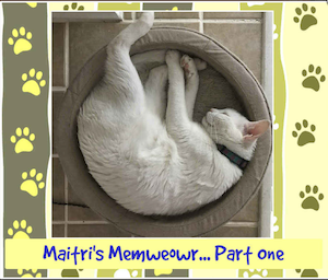 Click   here   to order Maitri's Memweowr Part One
