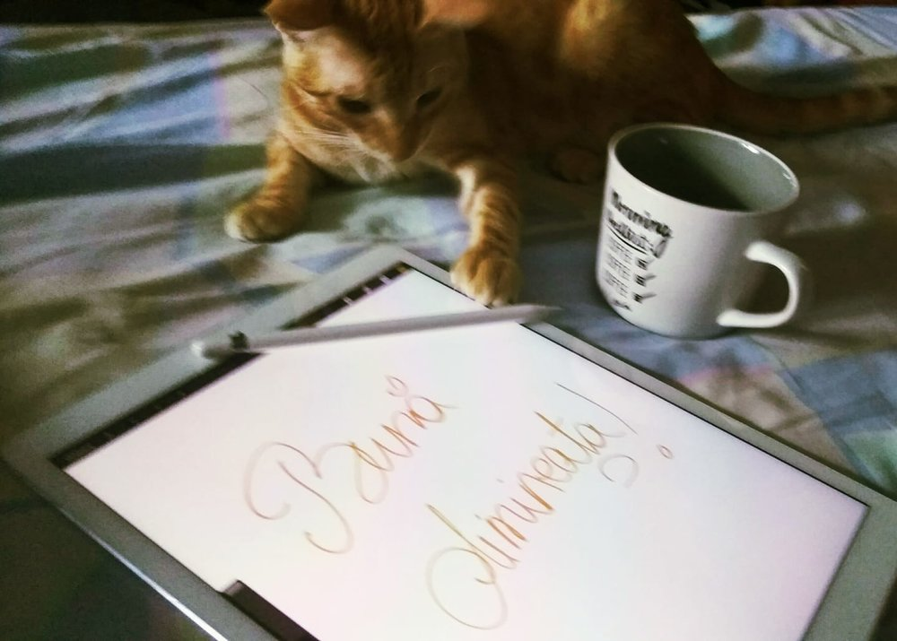 Cafia helping me doodle a good morning type