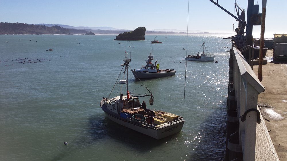 crab boats 2018.jpg