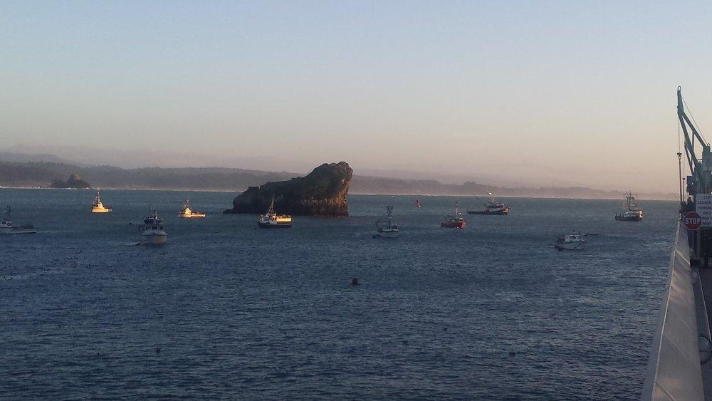 crab boats.jpg