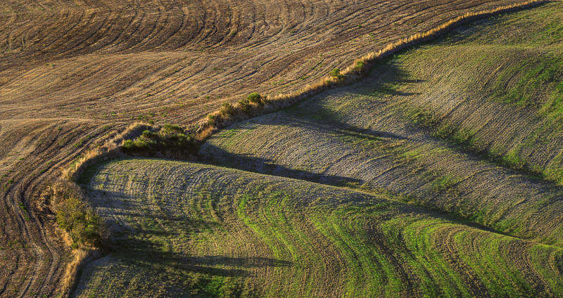 shades of tuscany  1.jpg