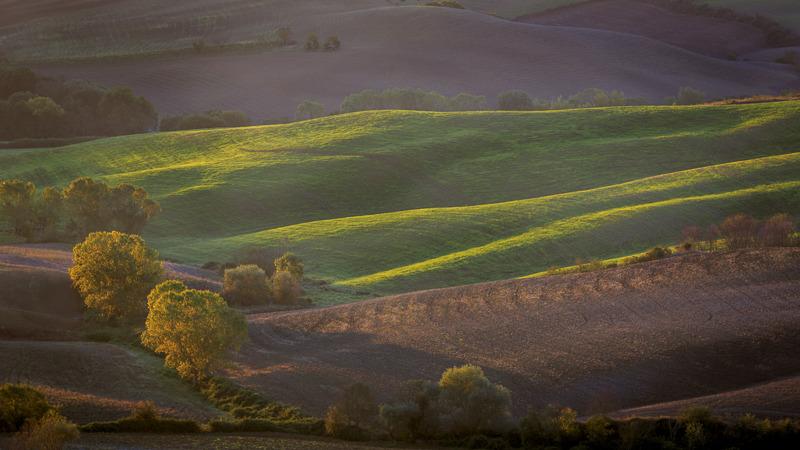 shades of tuscany  5.jpg