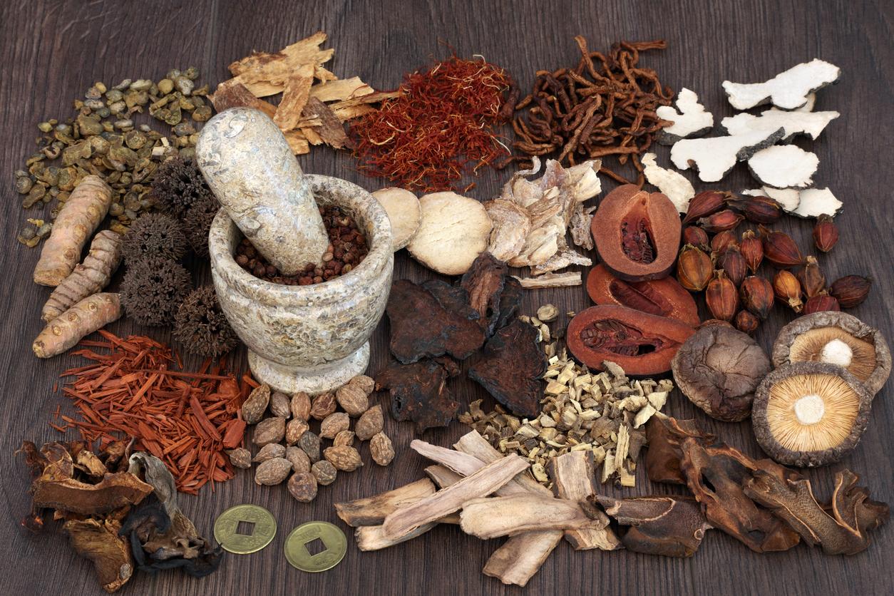 Medicinal Mushrooms: AHCC to Boost Immunity — CitySlim
