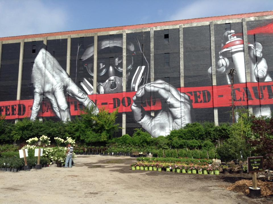 mural.jpeg
