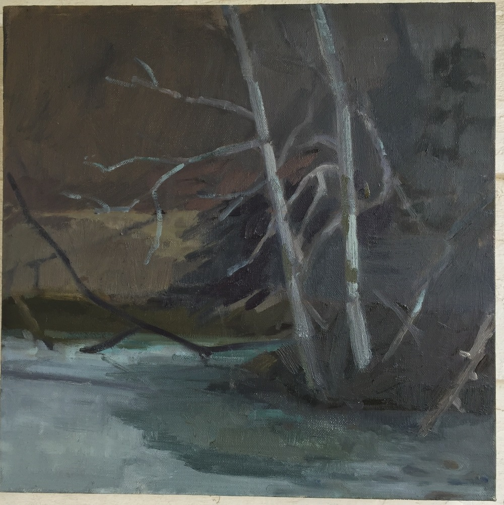 Pamela Salisbury       Winter Pond, 2016, oil on canvas, 14 x 14 in