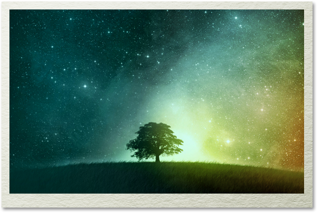 starrytree