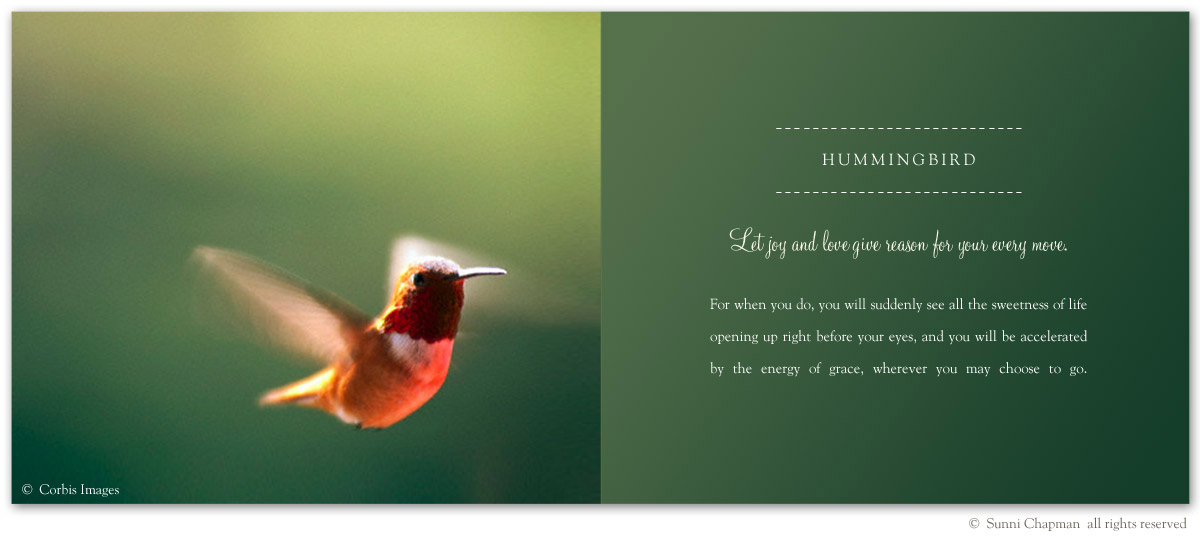 Hummingbird Symbolism - excerpt from the book Letters From Earth By Sunni Chapman