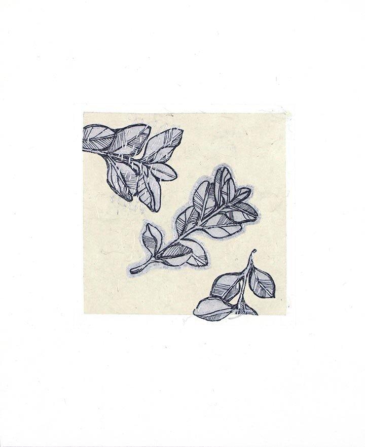 bookset-leafies.jpg