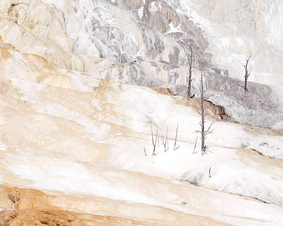 Travertine. Yellowstone