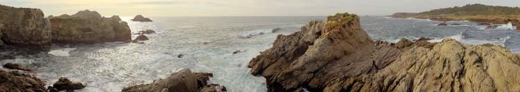 Point Lobos Scanning Camera Panoramic 1996. BetterLight Scanning Back.