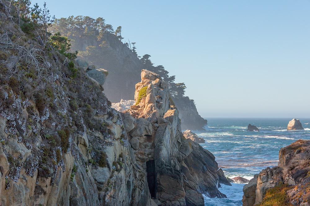 Whalers Cove Trail. Point Lobos.. 2010. Canon EOS 5D Mark II.
