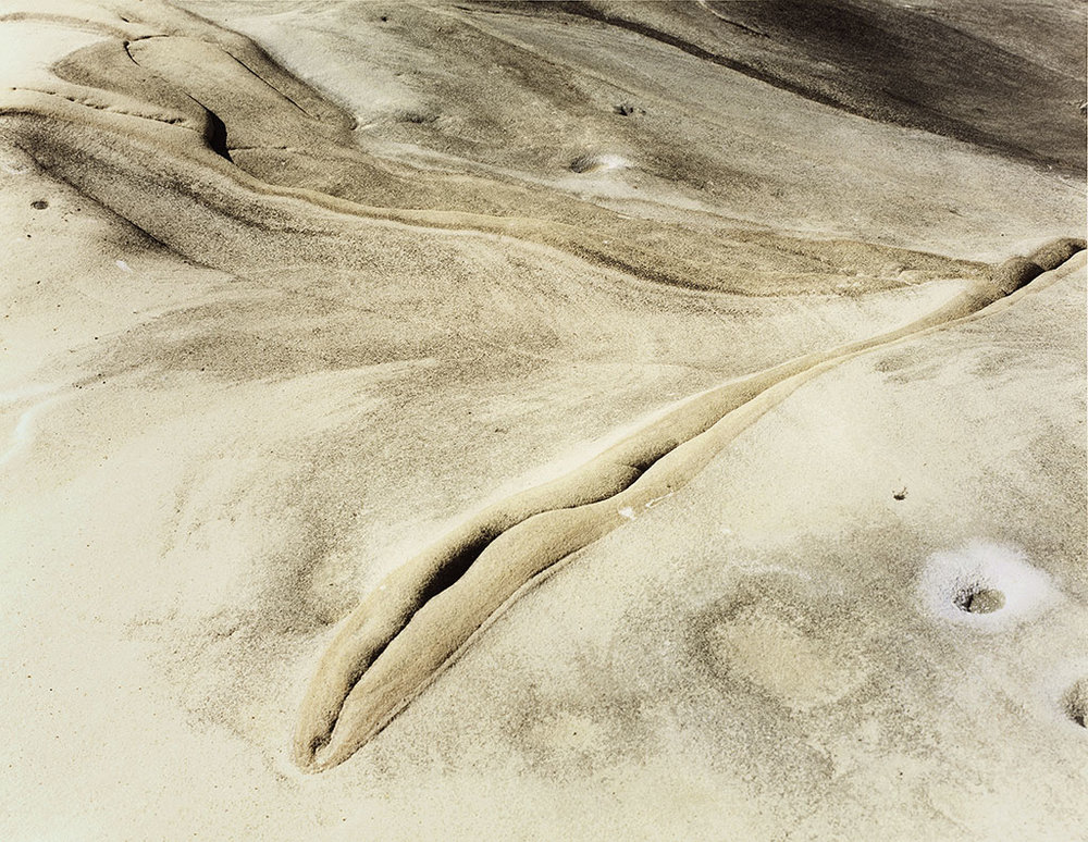 Rock Pattern. Point Lobos.. 1984. Mamiya RB67 Kodak Vericolor 120mm film.