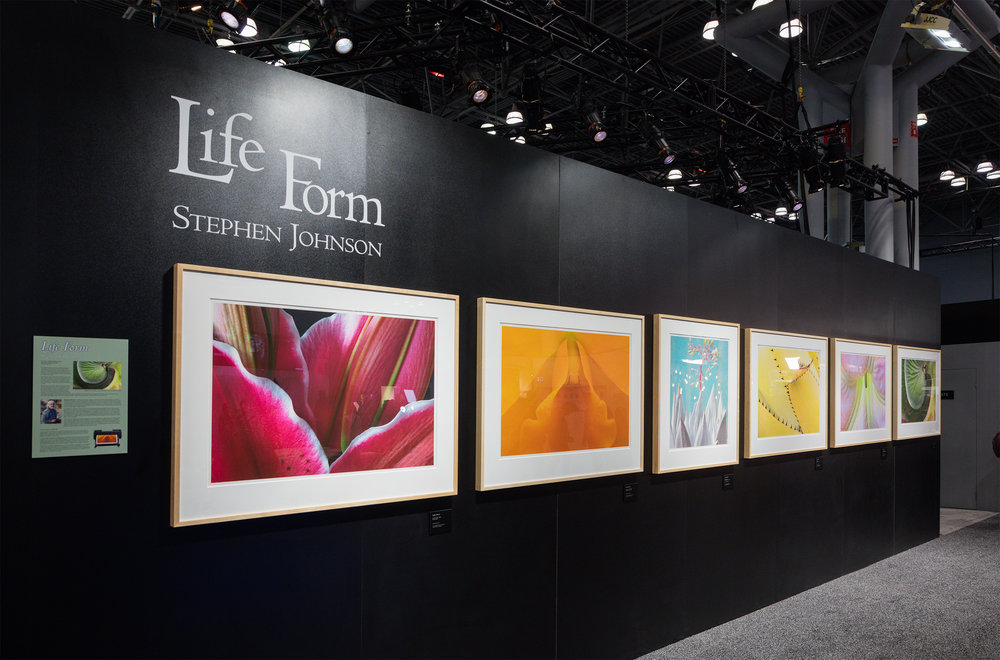 Life Form Gallery. Canon Booth, PhotoPlus. New York. 2017. Canon 5DSr.