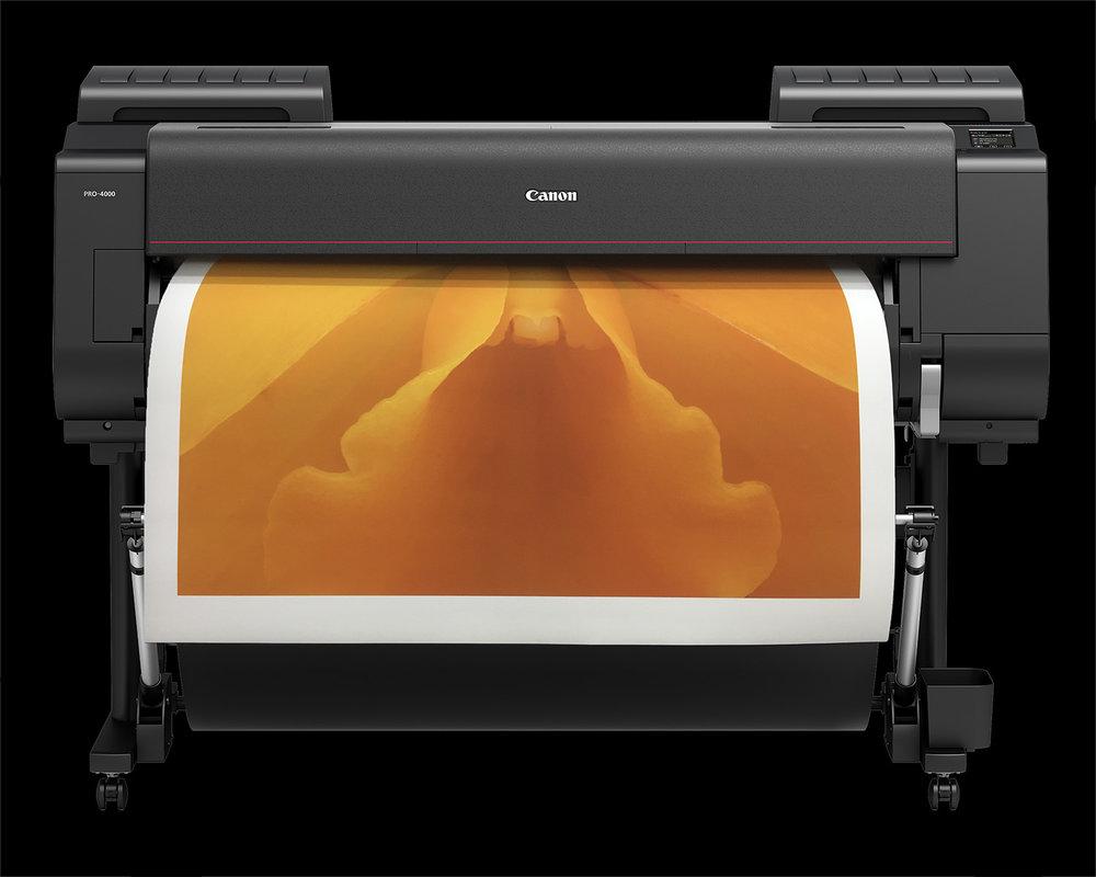Orange Orchid in Canon P4000 printer.