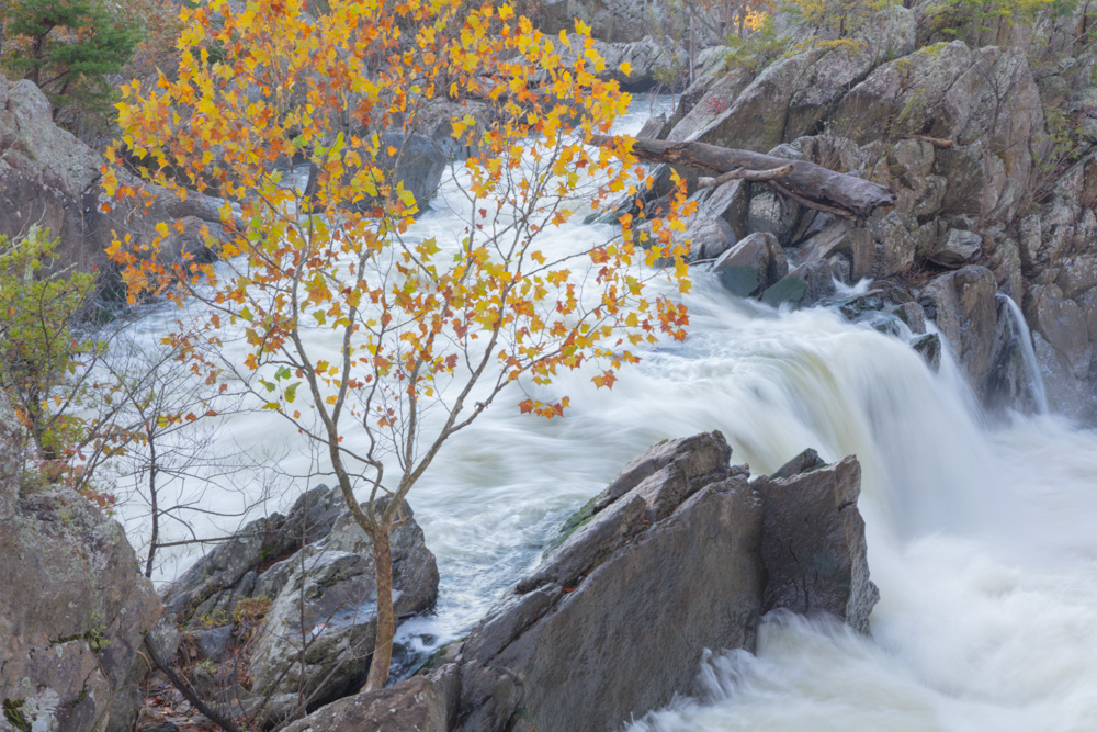Side Stream Waterfall. Great Falls of the Potomac. Maryland. 2018. Canon EOS 5DS R.