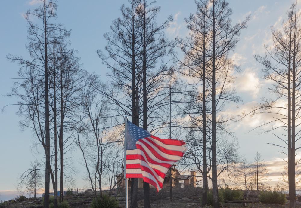 Flag and Burned Trees. Santa rosa Fire. 2019. Canon EOS 5DSr.