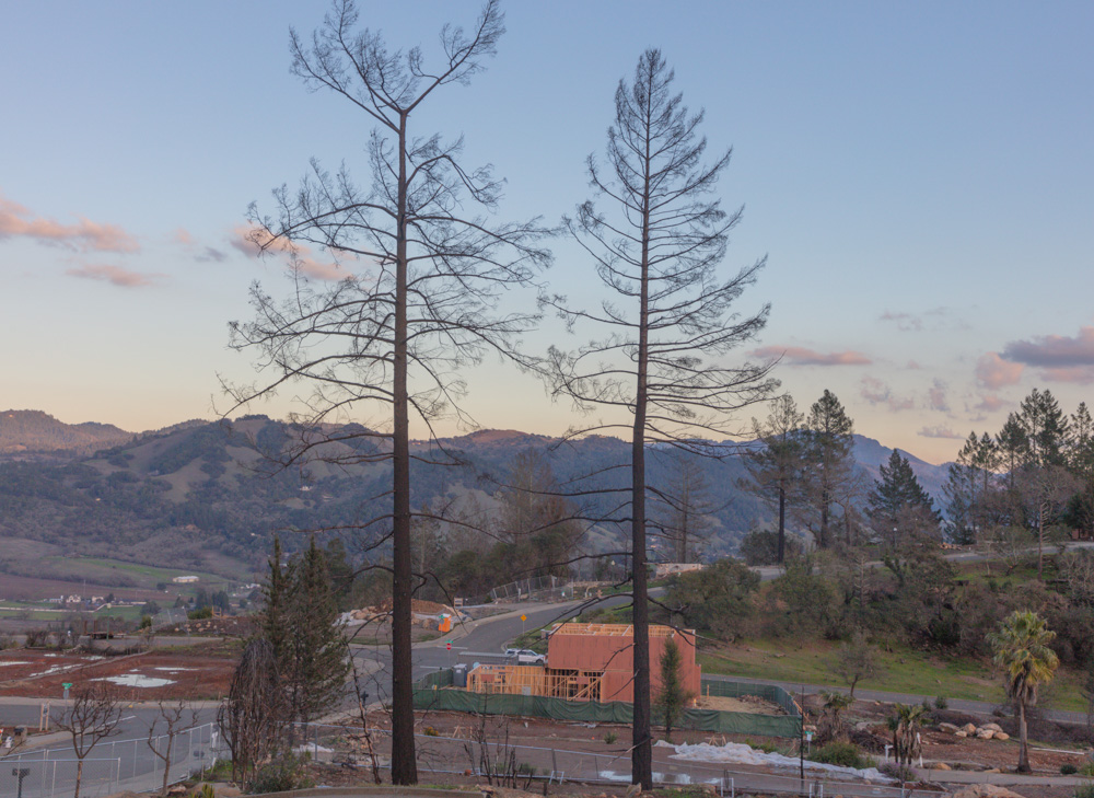 Rebuilding, one year later. Santa Rosa Fire, CA. 2019. Canon EOS 5DSr.