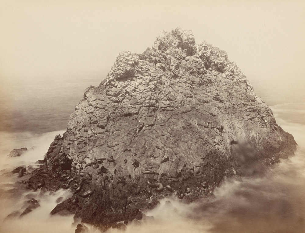 Sugarloaf Rocks. Farallon Islands. Carleton Watkins .