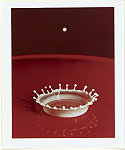 Milk Droplet. Harold Edgerton. Library of Congress.