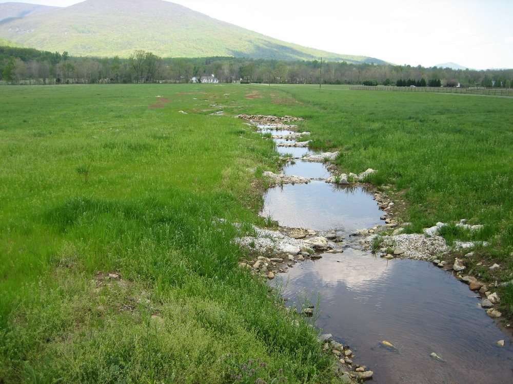 Glenthorne Farm Stream Bank