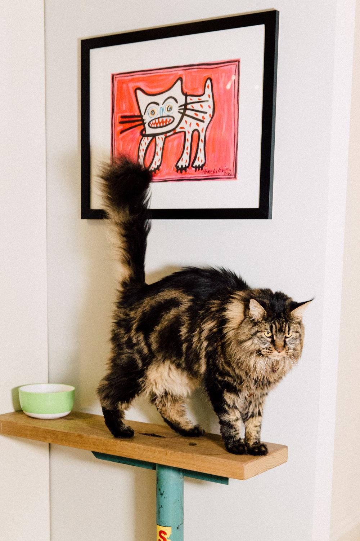 Mid century cat