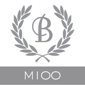 M100.jpg