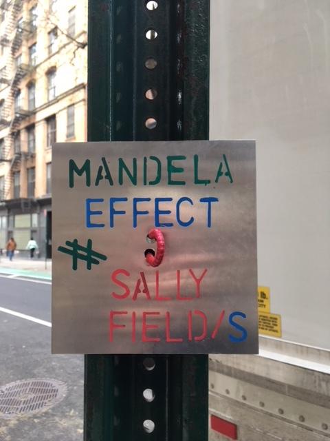 mandellaeffectsallyfield.JPG