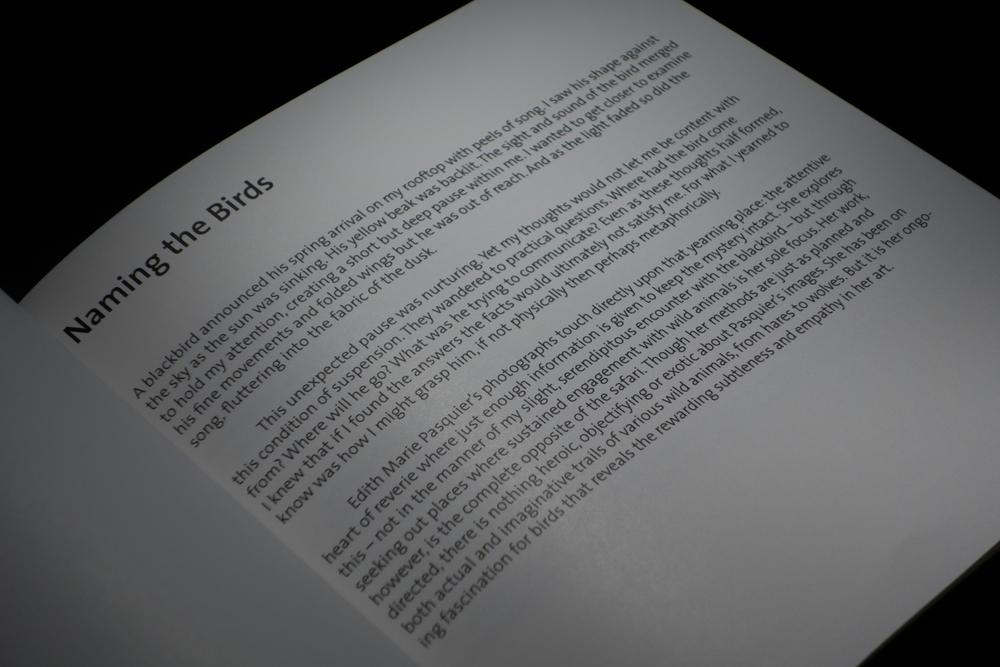 books-11.jpg