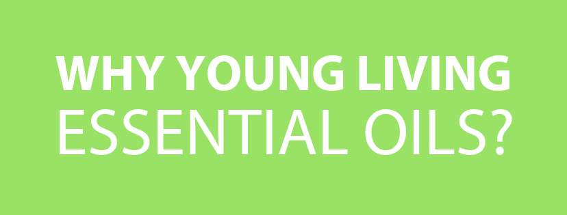 why yl oils header green.png