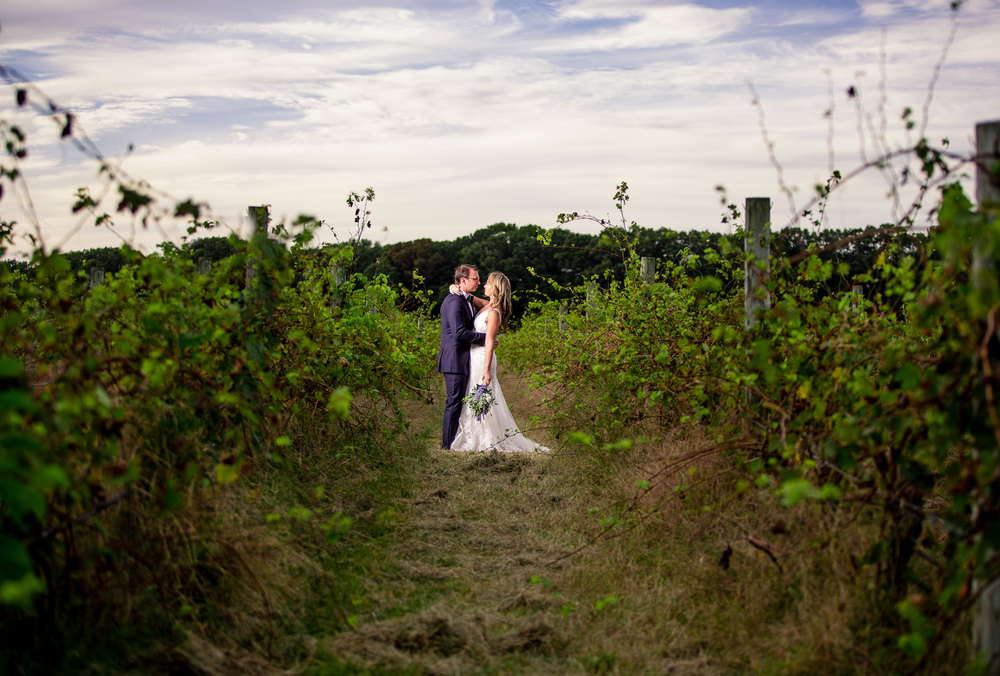 Max amy laurita winery wedding dennis pike photography junglespirit Gallery