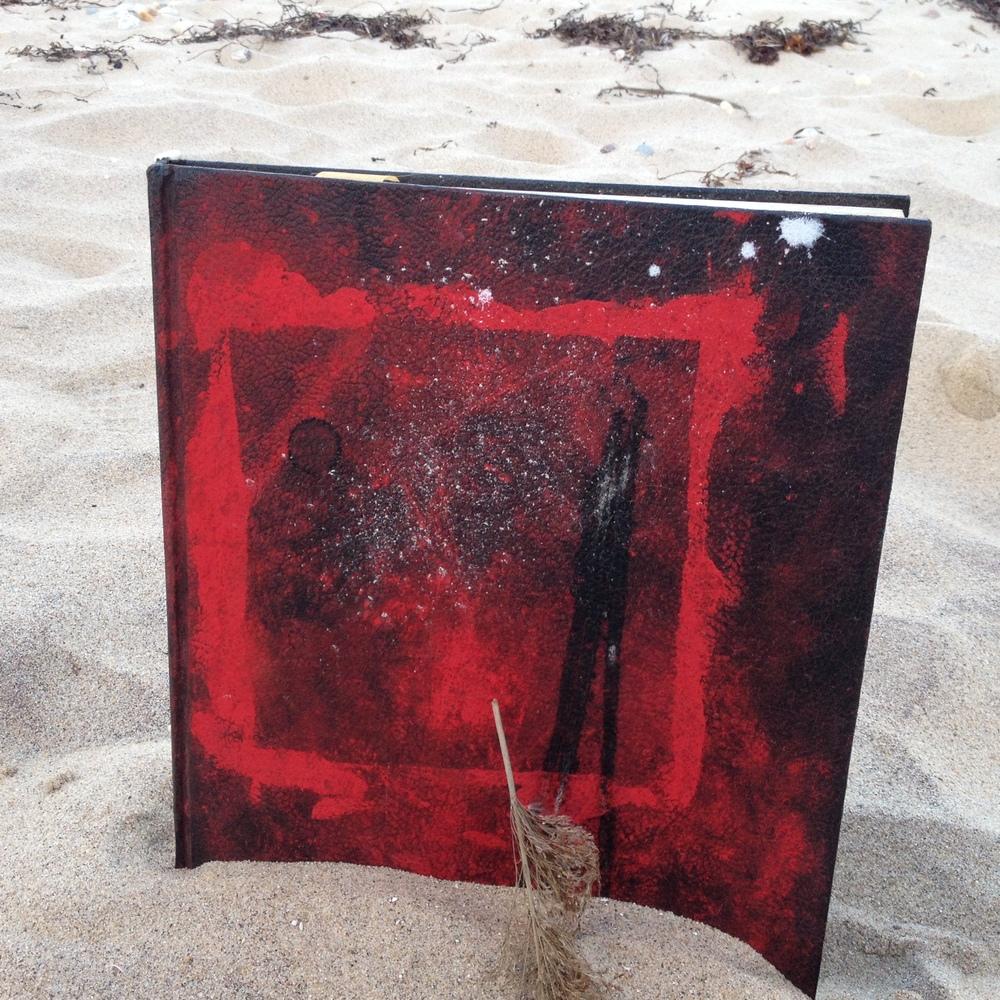 notebook, pigment