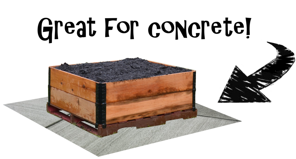 raised_garden_bed_concrete.png