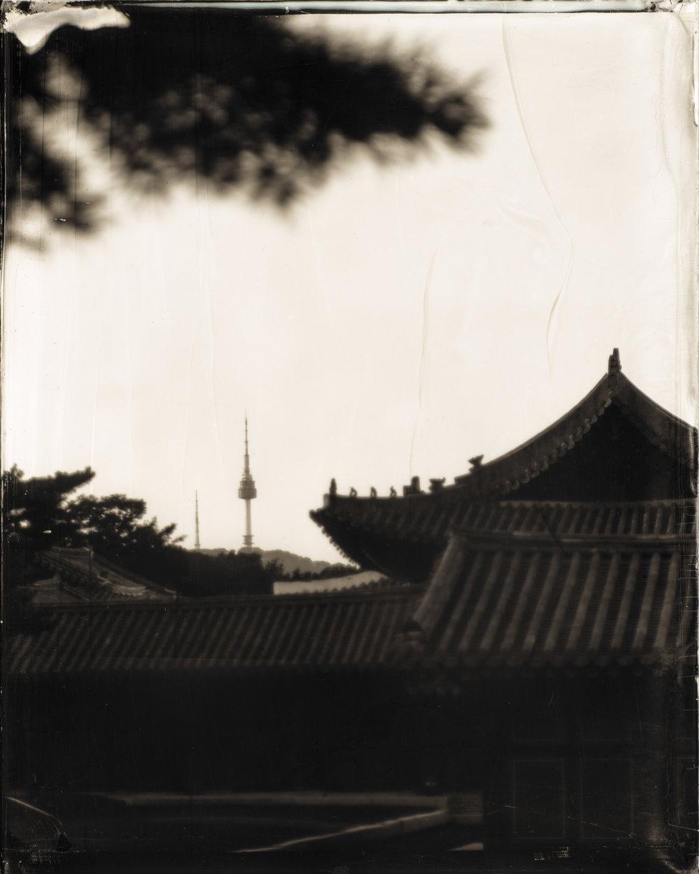 韓国-ソウル-昌慶宮  대한민국-서울-창경궁  South Korea-Seoul-Changgyeong Palace