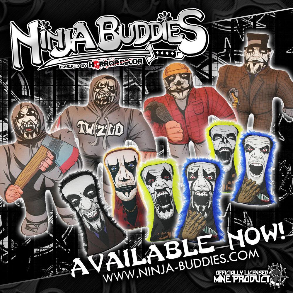 Ninja-Buddies-Launch-IG-Ad-1.jpg