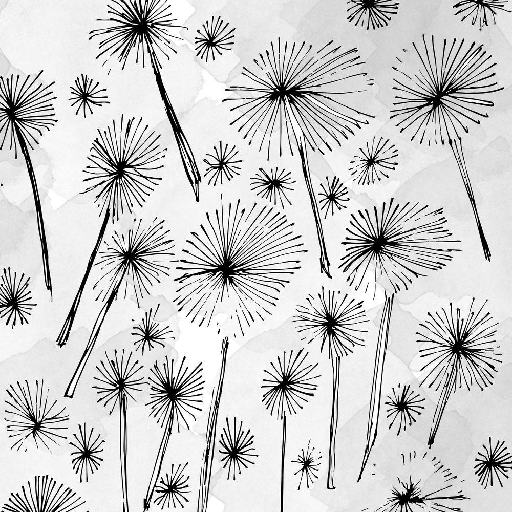 blk-dandelion-julia-darocha.jpg