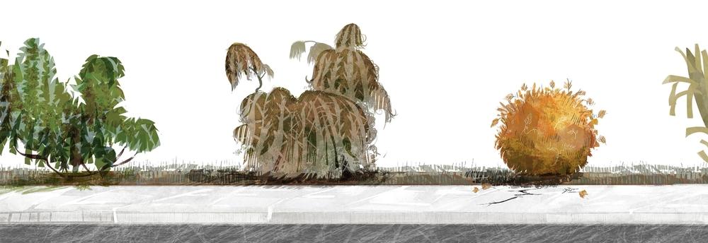 bushformailer.jpg