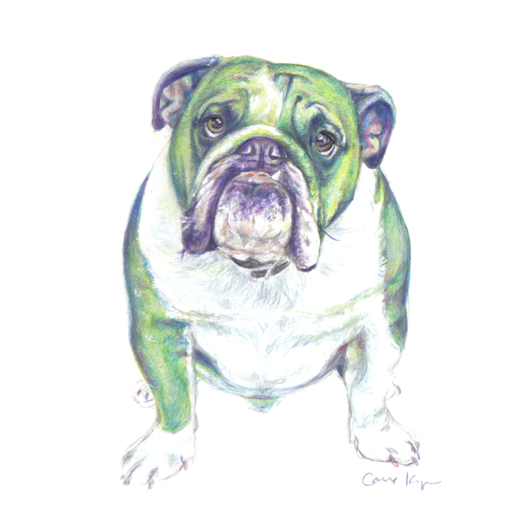 Green Bulldog.png