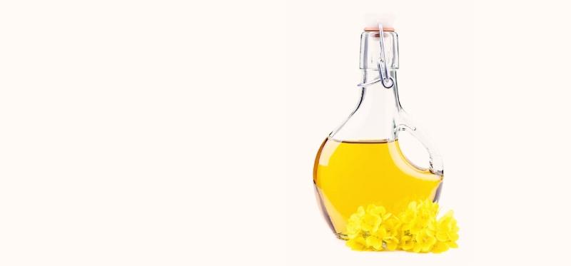 canola-oil-toxic.jpg