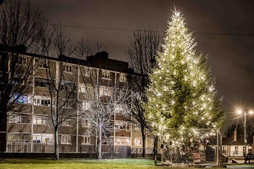 Pimlico 2