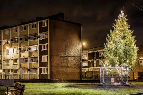 Pimlico 5