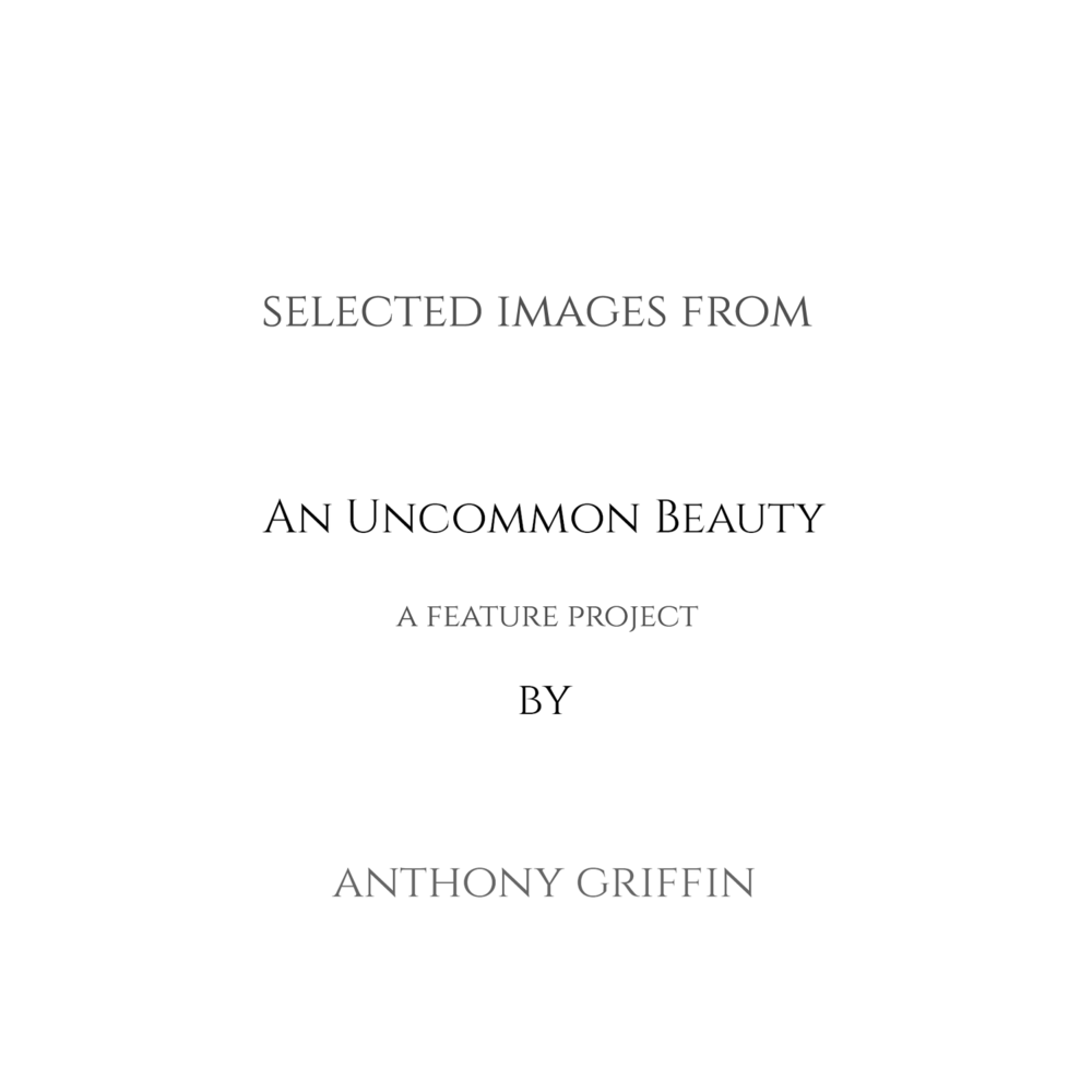 An Uncommon Beauty available under 'Projects'