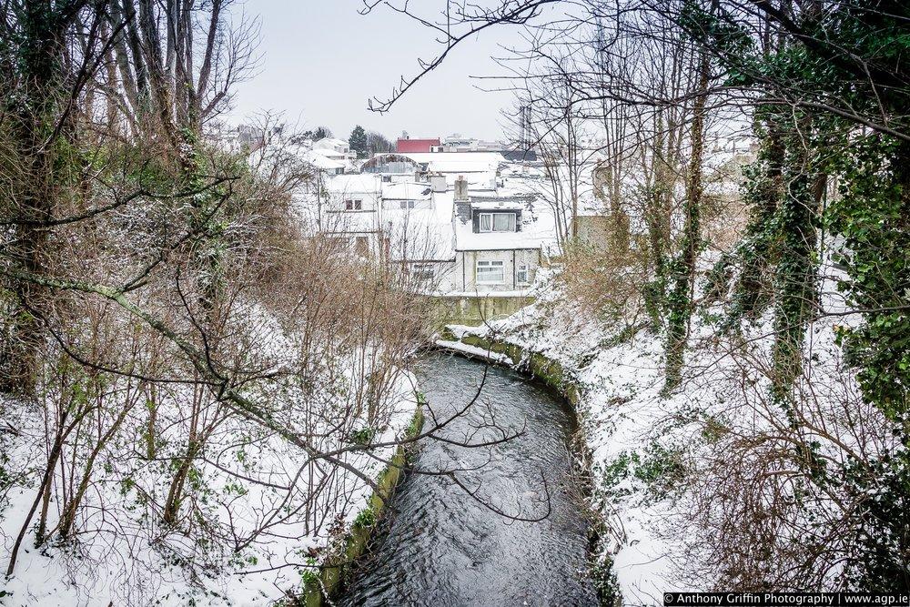DCC_snow (6 of 98).jpg