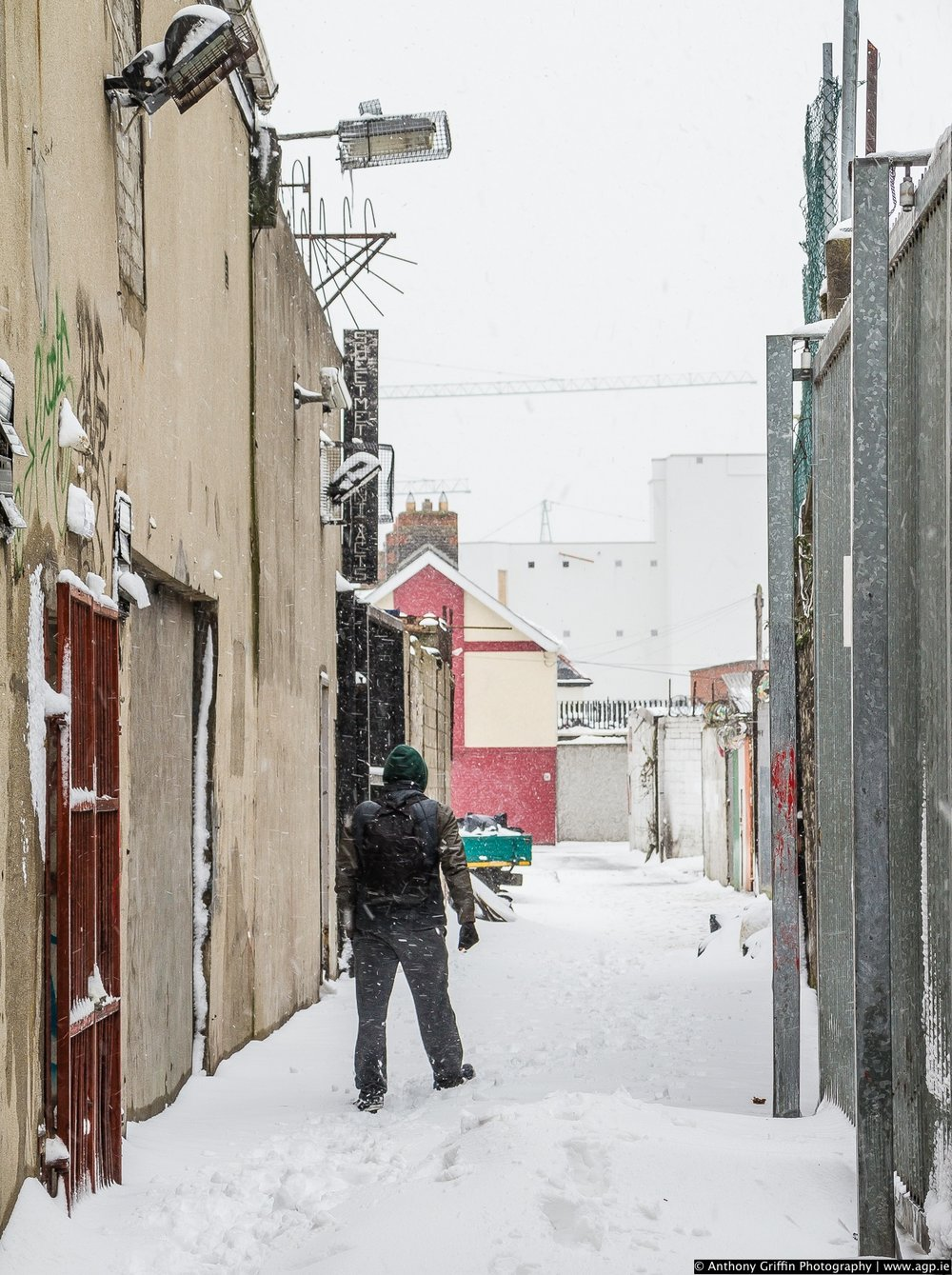 DCC_snow (29 of 98).jpg