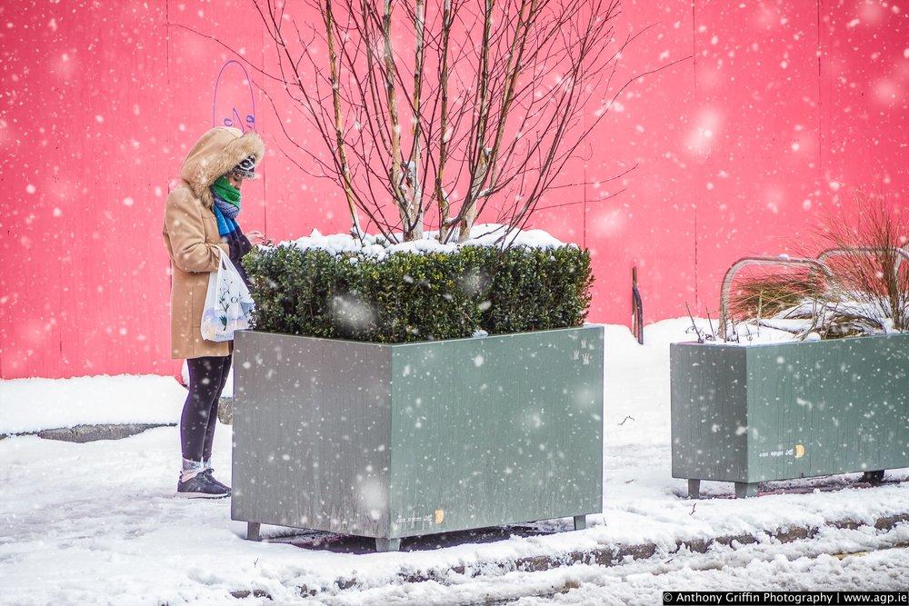DCC_snow (74 of 98).jpg