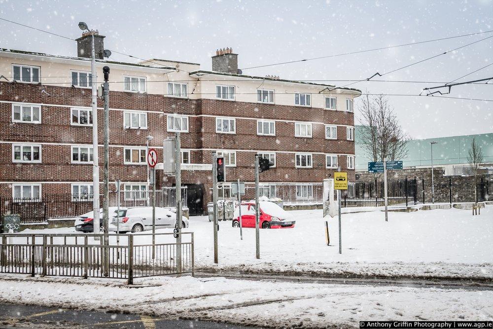 DCC_snow (8 of 98).jpg