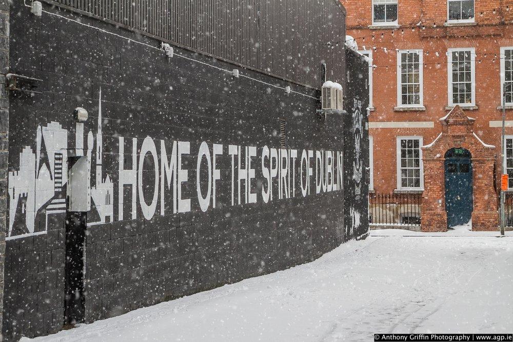 DCC_snow (51 of 98).jpg