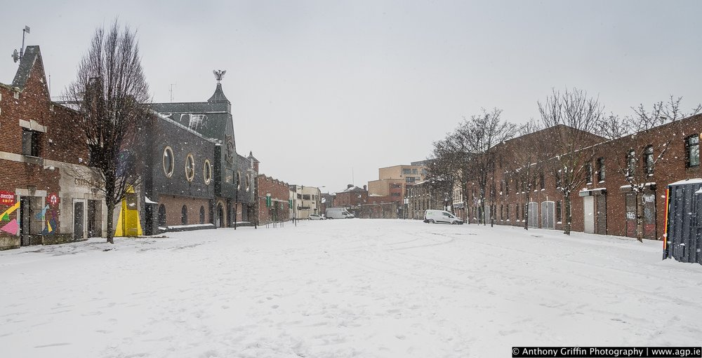 DCC_snow (53 of 98).jpg