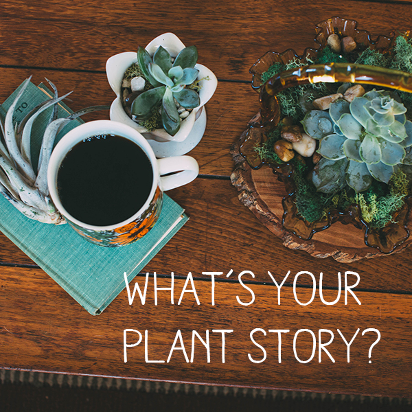 Glass Gardens Plant Stories Project